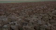 Ras de Terre labourée.jpg