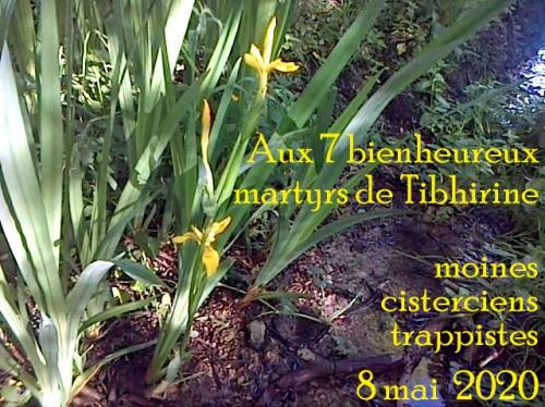 Aux 7 bienheureux martyrs de Tibhirine moines cisterciens trappistes 8 mai 2020.jpg